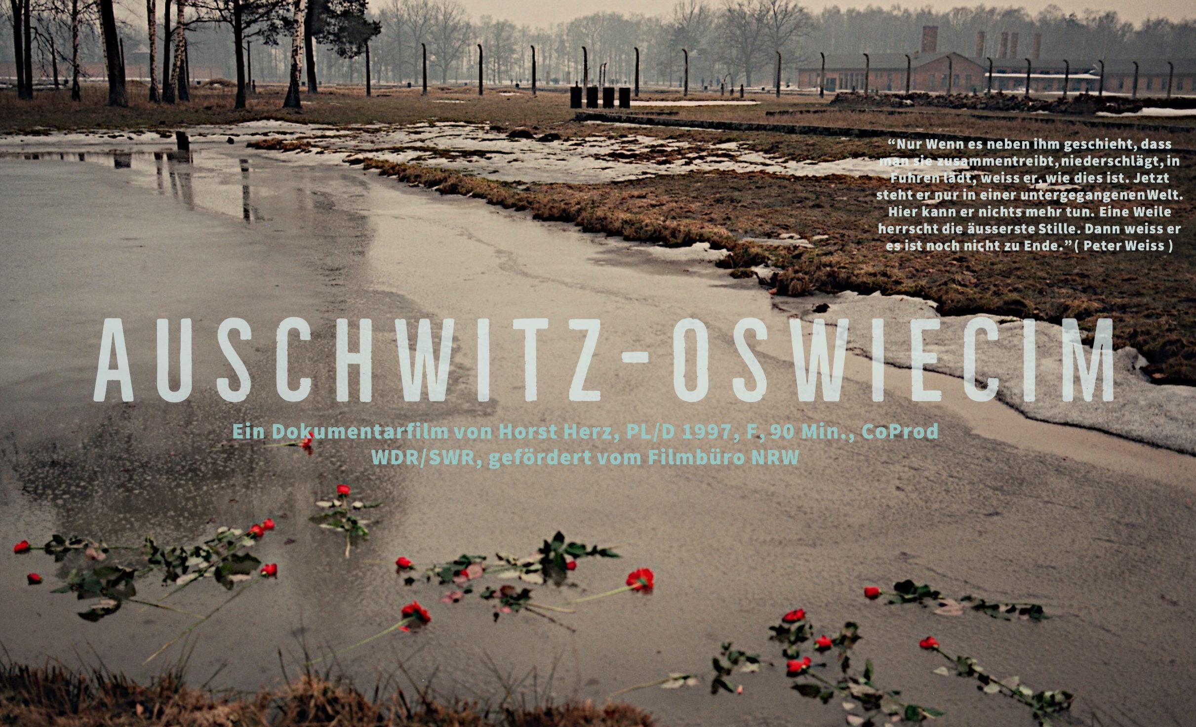 Filmplakat von Auschwitz -Oswiecim