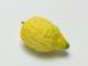 Etrog, eine duftende Zitrusfrucht